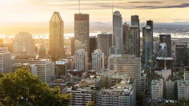 Trois membres du corps professoral de l'ESG UQAM au sein du comité d'experts économiques pour la relance de Montréal