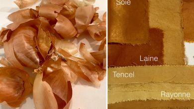 La chargée de cours de l'ESM Vanessa Mardirossian développe des teintures naturelles et non toxiques au moyen de rebuts alimentaires